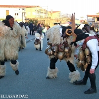 carnival-boes-e-merdules_1