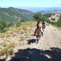Escursione a cavallo in Barbagia